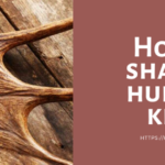 How to sharpen hunting knife